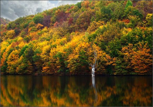 Фото осеннего леса и горного озера. Крым, Украина