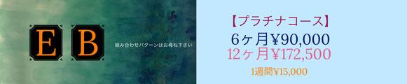 株式会社メアリー・カドガキ 原画レンタルアート「プラチナコース」