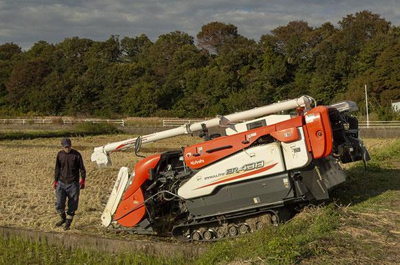 平成24年から耕作放棄地の復田化事業をスタートさせた相模原「田名望地河原」。亮太さんも現場で伐木や草刈り、耕起・除根などの作業を進めた。