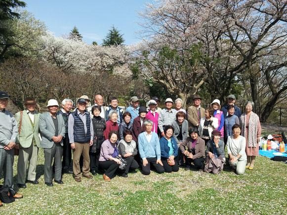 保土ケ谷公園花見会での集合写真(2015/4/6)