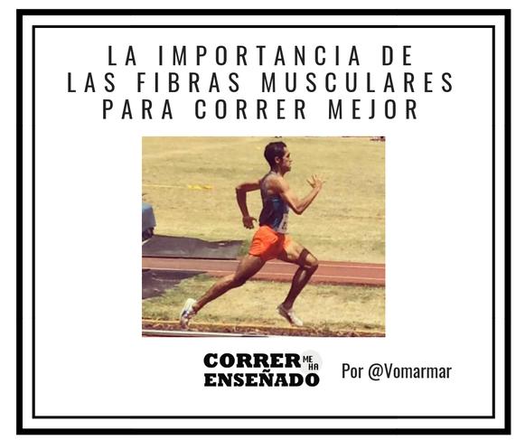 La importancia de las fibras musculares para correr mejor