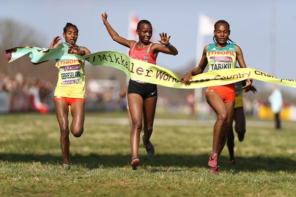 Beatrice Chebet gana la carrera femenina sub-20 en el Campeonato del Mundo de cross-country IAAF / Mikkeller Aarhus 2019 (Getty Images) © Copyright