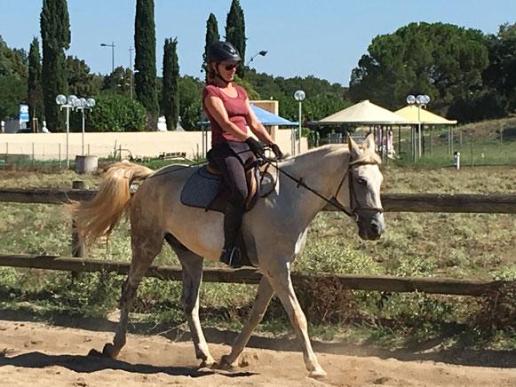 dressage à cheval