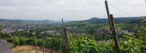 Der Rotweinwanderweg hoch oben über Walporzheim mit sehr schöner Fernsicht bis nach Bad Neuenahr