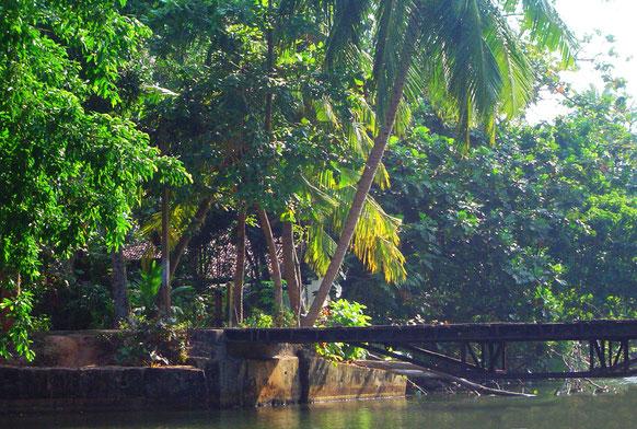 madu-river-sri-lanka