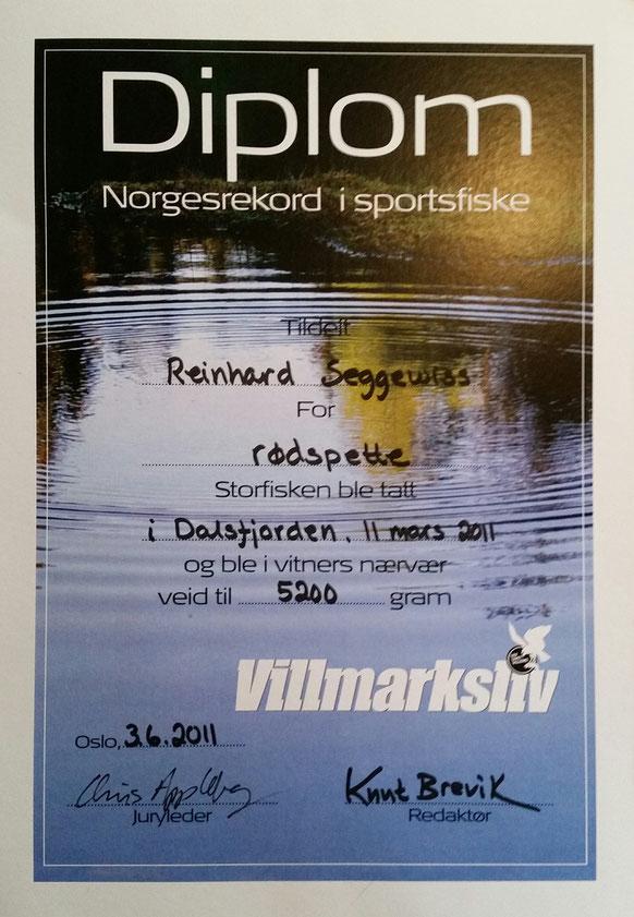 Scholle 5200gr.  gefangen im Dalsfjord/Bygstad. Offizieller Norwegenrekord schon seit 2011 und weltweit immer noch die grösste nachgewiesene Scholle