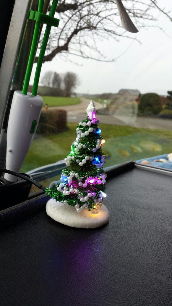 Mit diesem wunderschönen Weihnachtsbaum beginnt unsere Reise