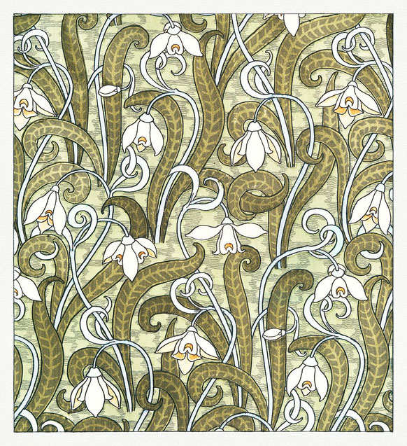 Maurice Pillard Verneuil, Snowdrop, part., in La plante et ses applications ornementales diretto da E.Grasset, 1896