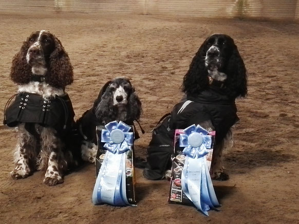 Successful at the Rally Obedience Competition in Fahrenkrug. Photo: Sebastian Feilke