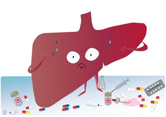 Liver & Drugs