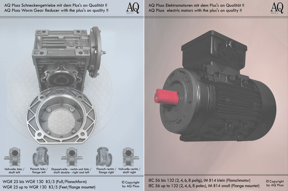 Schneckengetriebe mit EW Motor 230 V B3/5