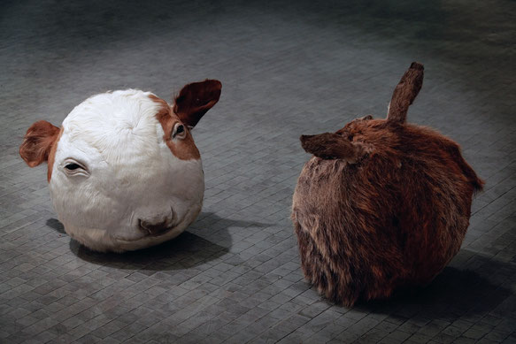 Géza Szöllősi: My Pets/Cow and Deer,, 2006, ø 50 cm, taxidermied animals heads