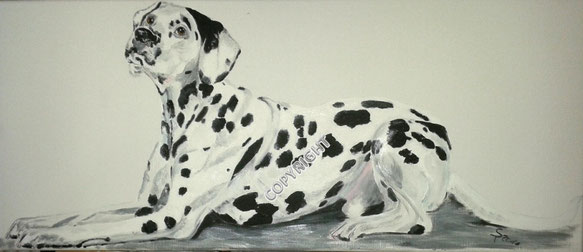 Hundeporträt: Dalmatiner seitlich liegend, Tiermalerei, gemalte Tierportraits nach Fotovorlage, Tiere zeichnen lassen