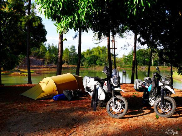 Camping underneath a mango tree