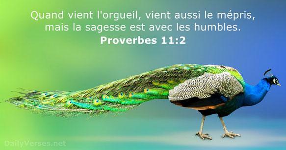 L'humilité est une qualité indispensable pour plaire à Dieu. Recherchez Jéhovah vous tous, humbles de la terre, qui obéissez à ses justes décrets. Recherchez la justice, recherchez l'humilité. Probablement serez-vous cachés au jour de la colère de Jéhovah