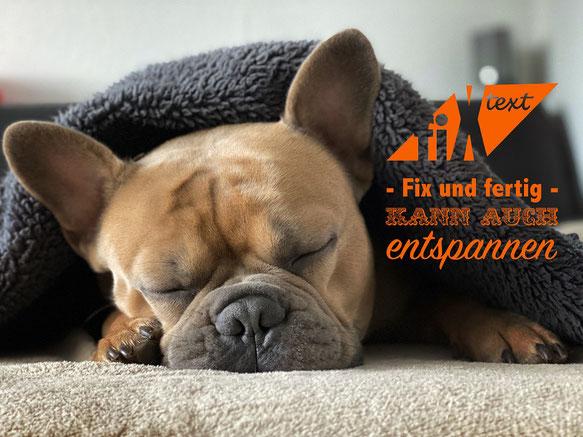 Fix-Text.de, Hund der schläft, Werbekampagne, Werbung kaufen, Conten-Kaufen, Deutsche Artikel herunterladen, Freier Content, Gratis Content, Logo kaufen, Seo kaufen, Deutscher Seo, Besseres Ranking bei Google