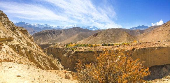 """Tolles Farbenspiel aus gelb-grünem Laub, orangenen Felsen, weißen Gipfeln und einem strahlend blauen Himmel. Auf dem Felsplatau befindet sich das Dorf """"Ghyakar""""."""
