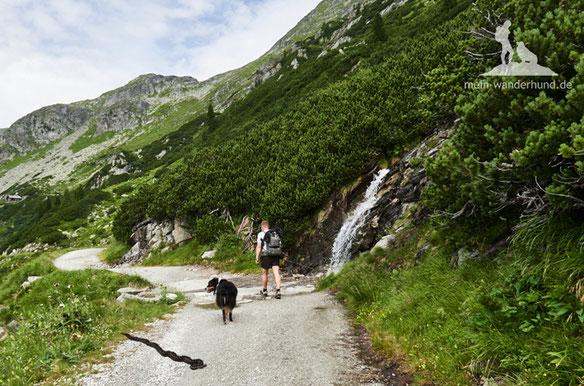 Schlange Hund; Wandern mit Hund, Schlange Berg