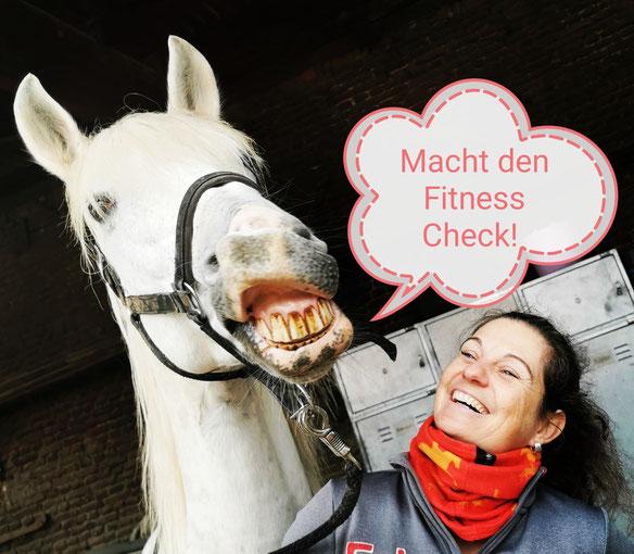 Osteopathie, Akupunktur und Naturheilunde für Pferde, Diana Tiebes