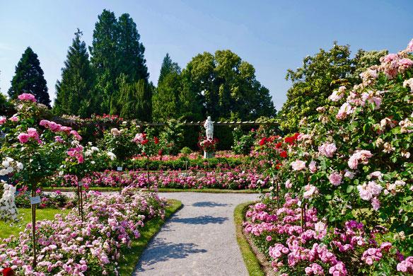 Gartenreise Deutschland: Insel Mainau im Bodensee