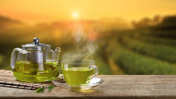La ciencia cada vez confirma más los beneficios del té verde