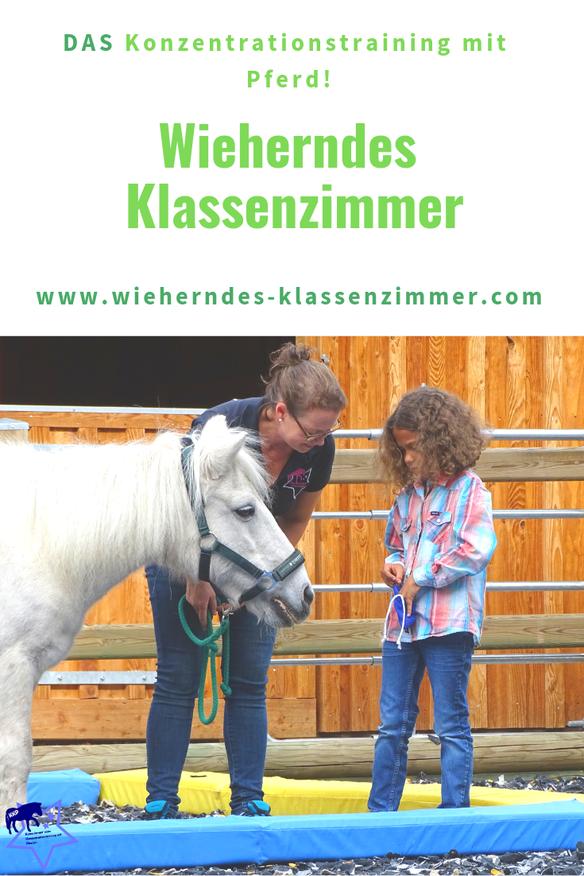 Unsere zertifizierten KKP Trainer veranstalten Konzentrationstrainings mit Pferd für Kinder von der ersten bis zur vierten Schulklasse.
