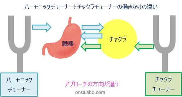 日本音叉ヒーリング研究会onsalaboのチャクラと音叉の関係