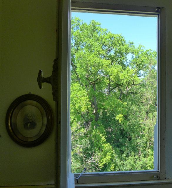 Blick aus dem Fenster des Zimmers Belvédère Richtung Napoleonturm