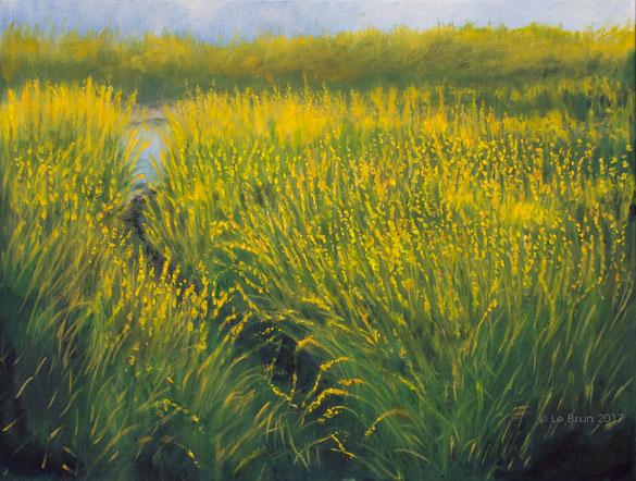 "Oils on canvas  (18"" x 24"")"