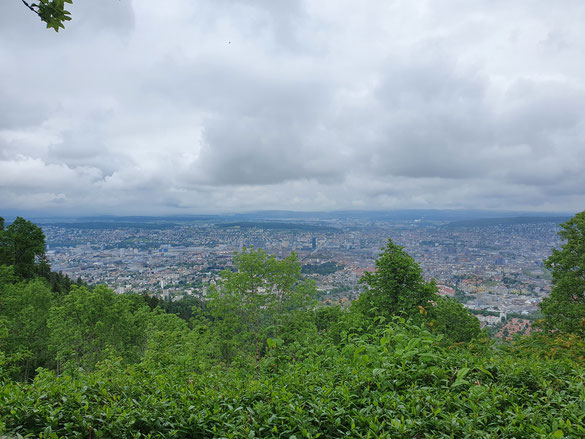 Blick auf die Stadt Zürich
