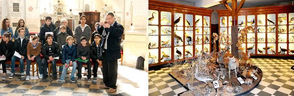 Église Saint-Louis et cabinet de zoologie et d'histoire naturelle de La Flèche