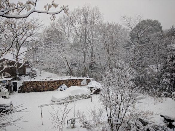 仲本律子 陶芸作家 ブログ 女性陶芸家 茨城県笠間市  雪が降った日 雪景色
