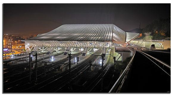 14 mm, Bahnhof Guillemins Liége, Belgien
