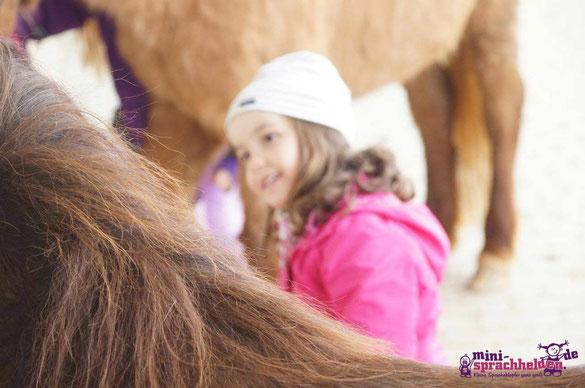 Faszination Pferde - vermutlich durch Außerirdische in die DNA eingepflanzt