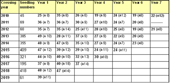 Number of internodes produced annually by apple seedlings
