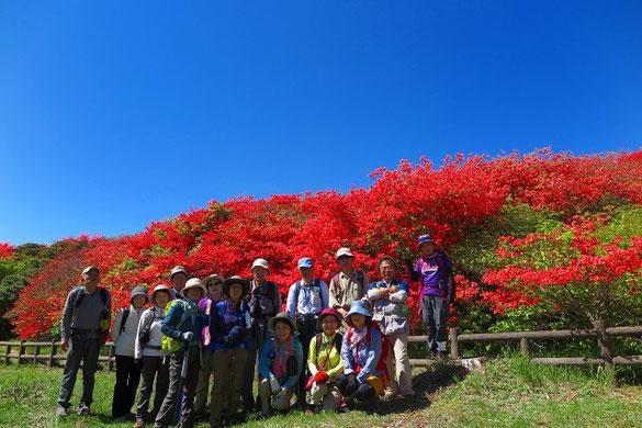 高越山  船窪のツツジ公園        画像をクリックでBLOGへ