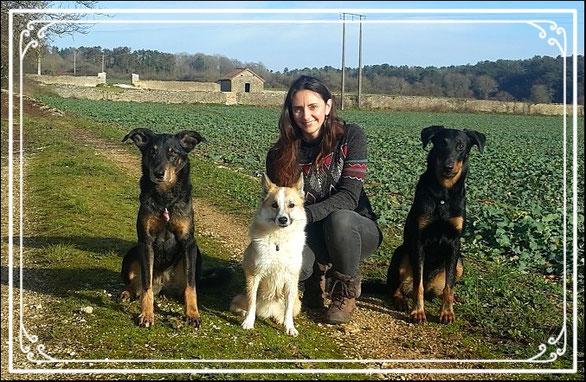 Photo de Miura, Leska et Draka pour Dog'N'Co Education canine, Conseil comportemental, Médiation animale à Dijon et alentours