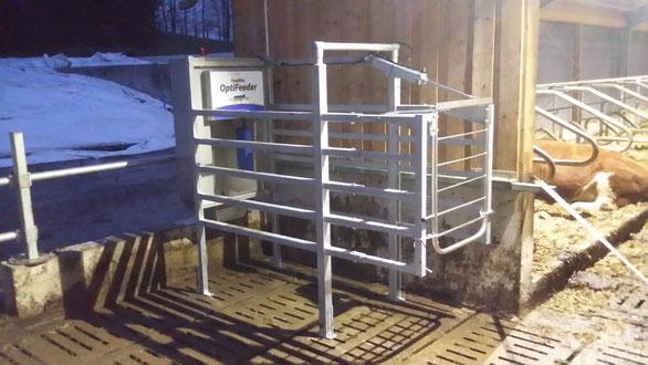 Futterstation, Dairymaster Futterstation, Hanskamp Futterstation, Hanskamp, Dairymaster, Futter Station,