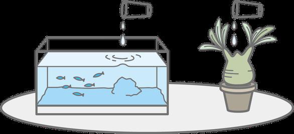 水換え不要の水槽は、カルキ抜き等必要ありません。
