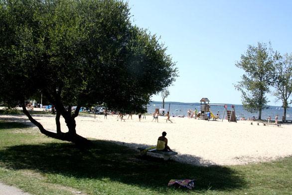 Camping 3 etoiles bord de plage landes