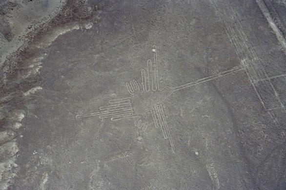 Meine Höhepunkte in Peru Der Flug über die weltberühmten Nasca Linien in der Atacama Wüste