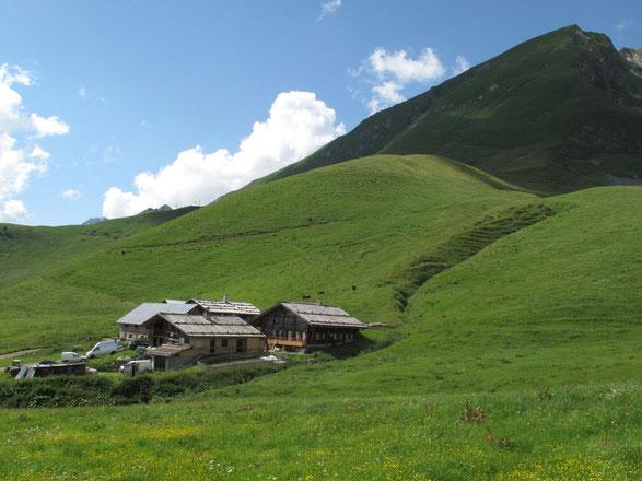 """La pente, au-dessus du hameau """"le Fenil"""""""