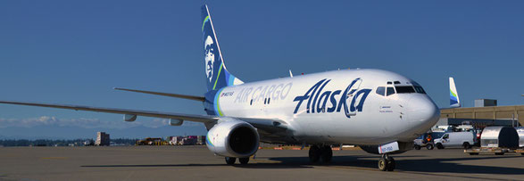 Alaska, Airlines (photo) Spice Jet and Express Freighters Australia have resumed operations with their B737-700 P2Fs after safety issues forced the grounding of the jetliners.