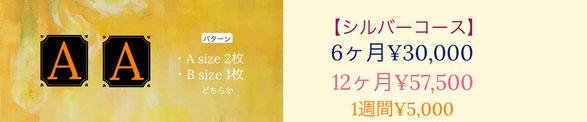 株式会社メアリー・カドガキ 原画レンタルアート「シルバーコース」