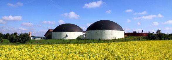 Vorteile Bioenergie