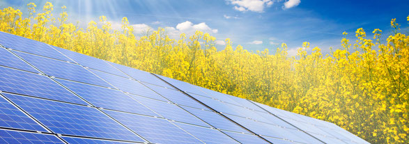 Vorteile Sonnenenergie | energy-vision.de