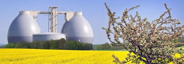 Biogas Projekte | energy-vision.de