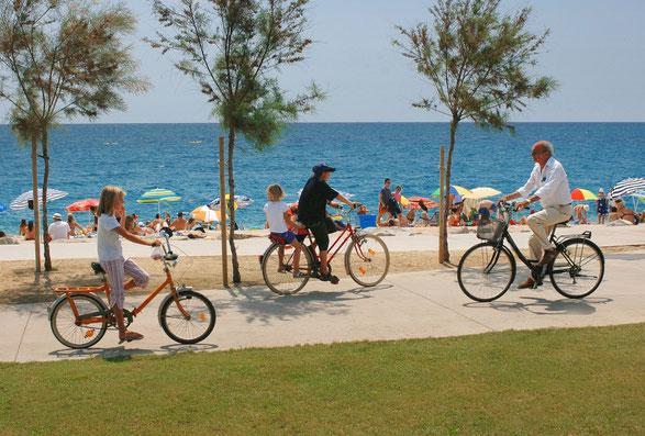 Pineda de Mar, alquiler, lloguer, rent, rental shop, bikes, bicicletas, bicicletes, motos, motorbikes, sccoters, scooter, 125 centimetros cúbicos, 125cc, Maresme, Barcelona