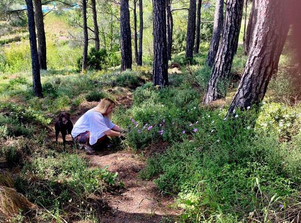 Anna beim Kräuter sammeln.