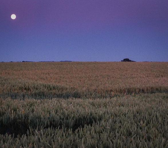 Dunkel war's der Mond schien helle....